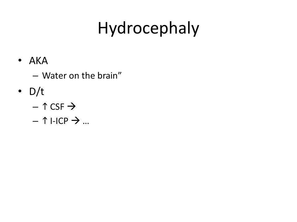 Hydrocephaly AKA – Water on the brain D/t – CSF – I-ICP …