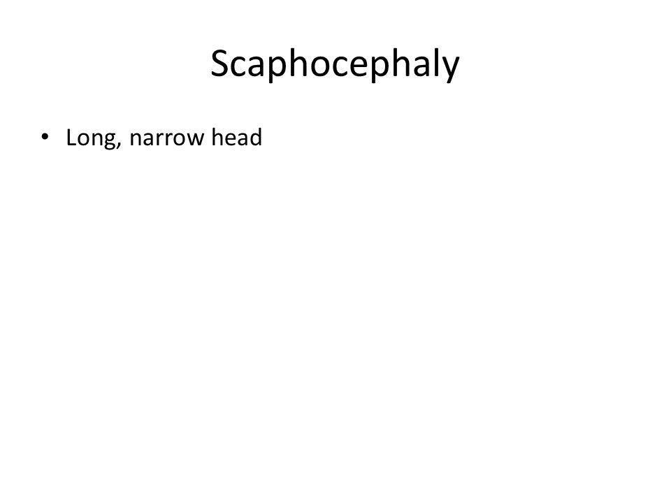 Scaphocephaly Long, narrow head