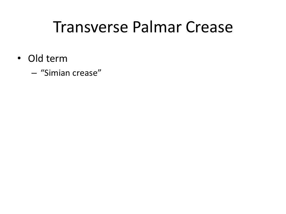 Transverse Palmar Crease Old term – Simian crease