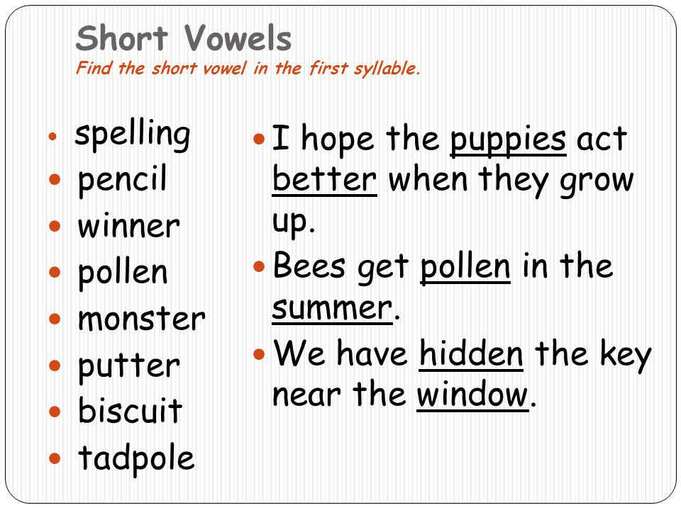 Short Vowels Find the short vowel in the first syllable. spelling pencil winner pollen monster putter biscuit tadpole I hope the puppies act better wh