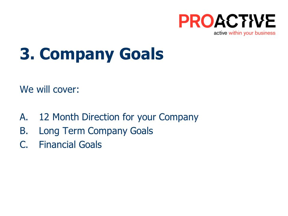 3. Company Goals We will cover: A.12 Month Direction for your Company B.Long Term Company Goals C.Financial Goals