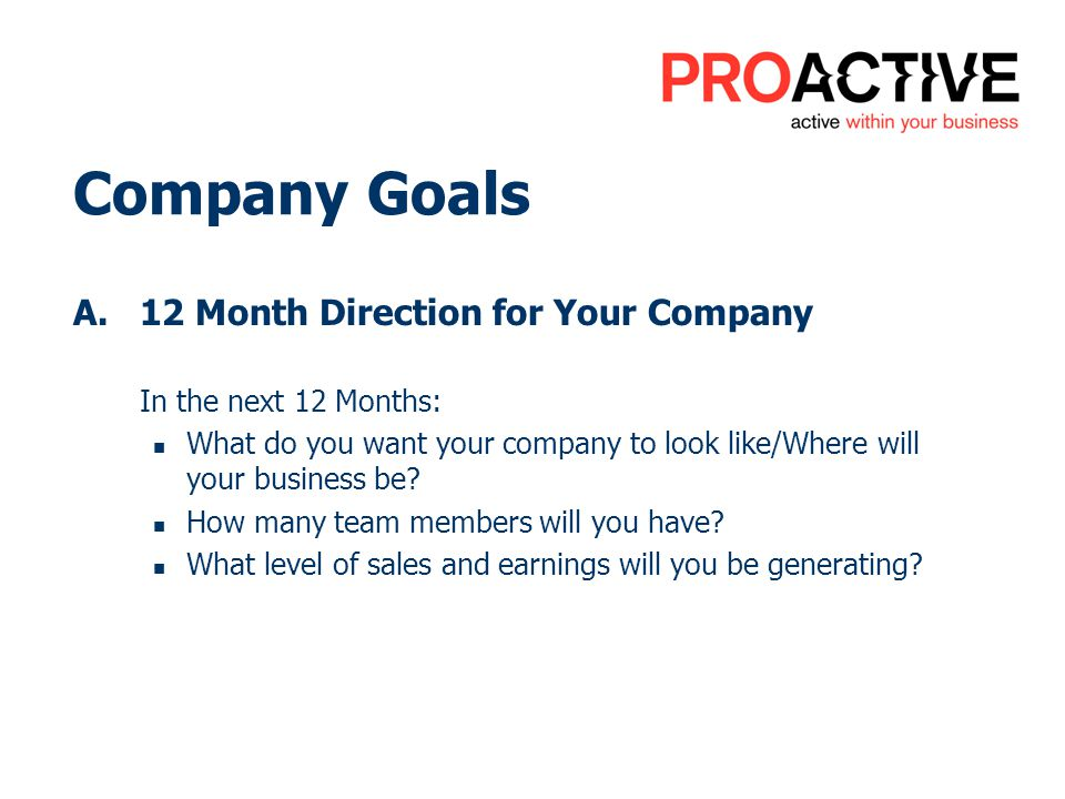 Company Goals A.12 Month Direction for Your Company In the next 12 Months: What do you want your company to look like/Where will your business be.