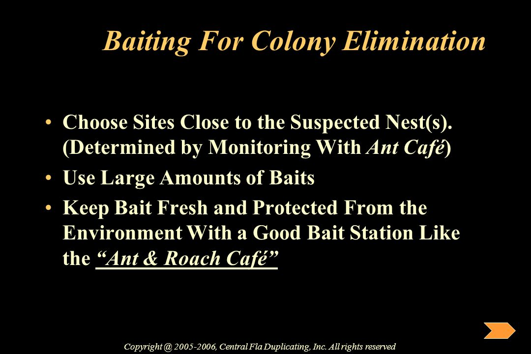 Baiting For Colony Elimination Choose Sites Close to the Suspected Nest(s). (Determined by Monitoring With Ant Café) Use Large Amounts of Baits Keep B