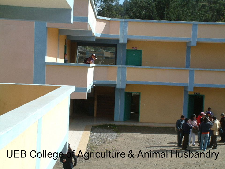 UEB College of Agriculture & Animal Husbandry