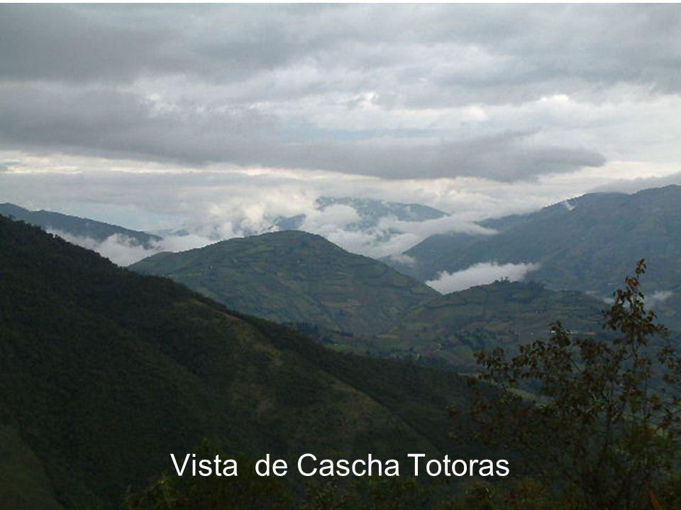 Vista de Cascha Totoras
