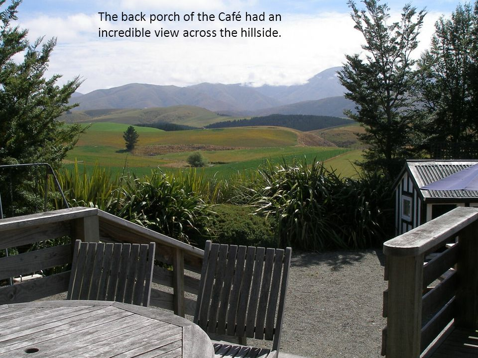 The back porch of the Café had an incredible view across the hillside.