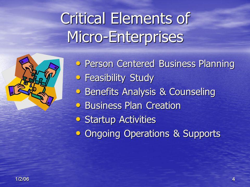 1/2/064 Critical Elements of Micro-Enterprises Person Centered Business Planning Person Centered Business Planning Feasibility Study Feasibility Study