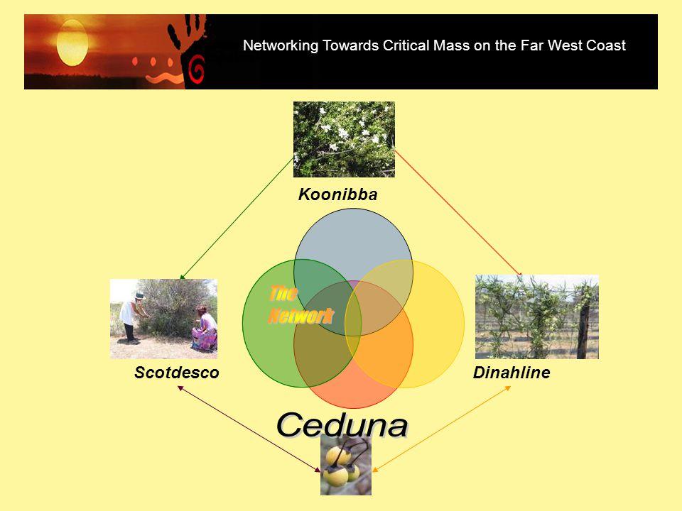 Desert Biz Desert Biz is part of Desert Knowledge Cooperative Research Centre Core Project 3.