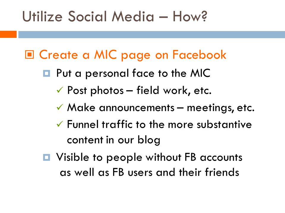 Create a MIC page on Facebook Put a personal face to the MIC Post photos – field work, etc.