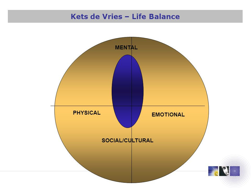 PHYSICAL MENTAL SOCIAL/CULTURAL EMOTIONAL Kets de Vries – Life Balance