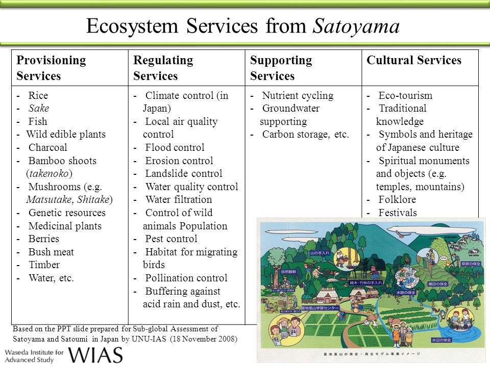 Provisioning Services Regulating Services Supporting Services Cultural Services - Rice - Sake - Fish -Wild edible plants - Charcoal - Bamboo shoots (t