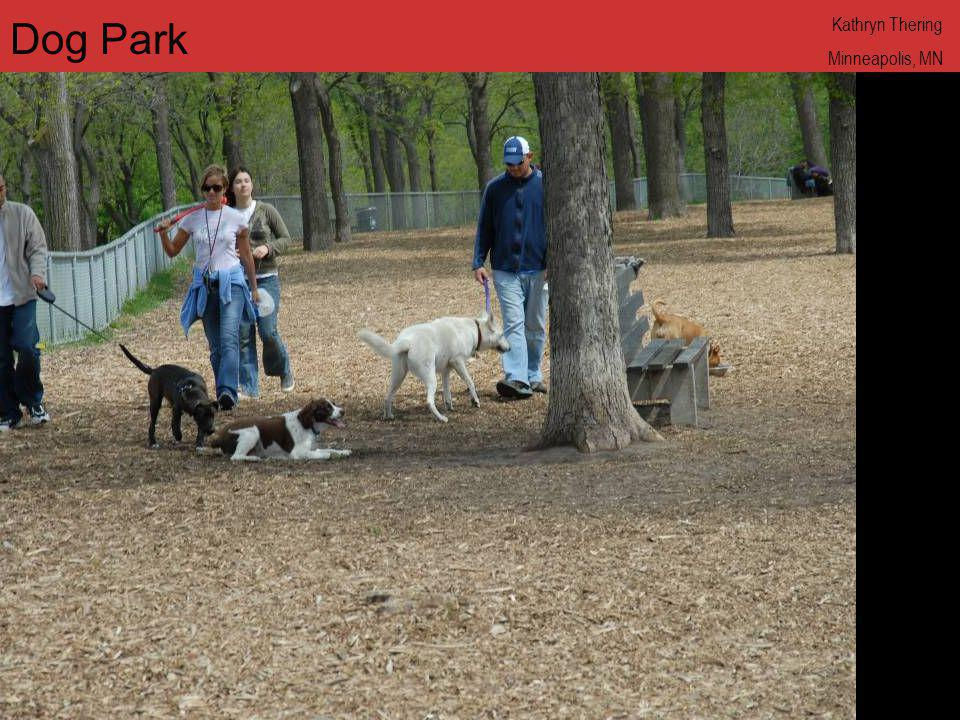 Dog Park Kathryn Thering Minneapolis, MN