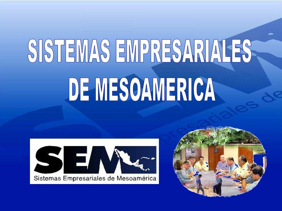 ECOM El Salvador Chemonics International Inc Enterprise Works Worlwide (EWW) Clusa Proarca Salvadoran foundation for Investigations of the Coffee (PROCAFE) Salvadorean Coffee Council La Villa S.A.