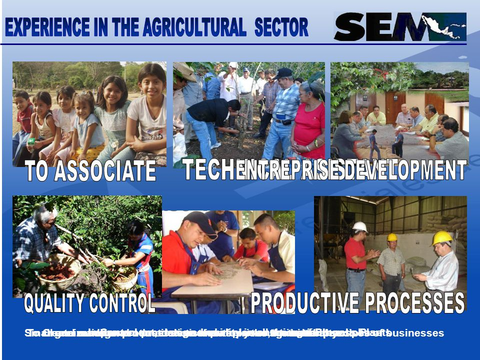 Small and medium producer assistants for your sustainabilityTo create management models to answer in the agricultural sectorOrganization and constitution of enterprises, for better practices of businesses Control process and quality in all the agricultural phaseImprovement, design and implementation of Process Plants