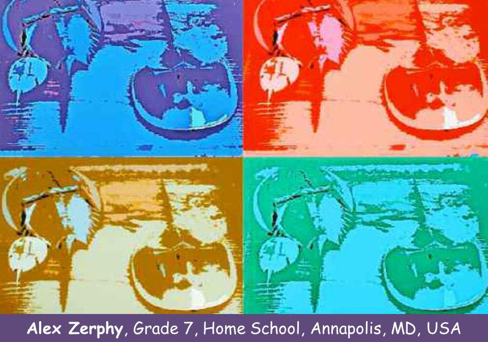 Kaitlin George, grade 6 Stevensville M.S., Stevensville, MD Naomi Davidoff, grade 10 Haverford H.S., Haverford, PA