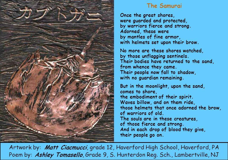 Brandon Ard grade 10 Haverford H.S. Haverford, PA