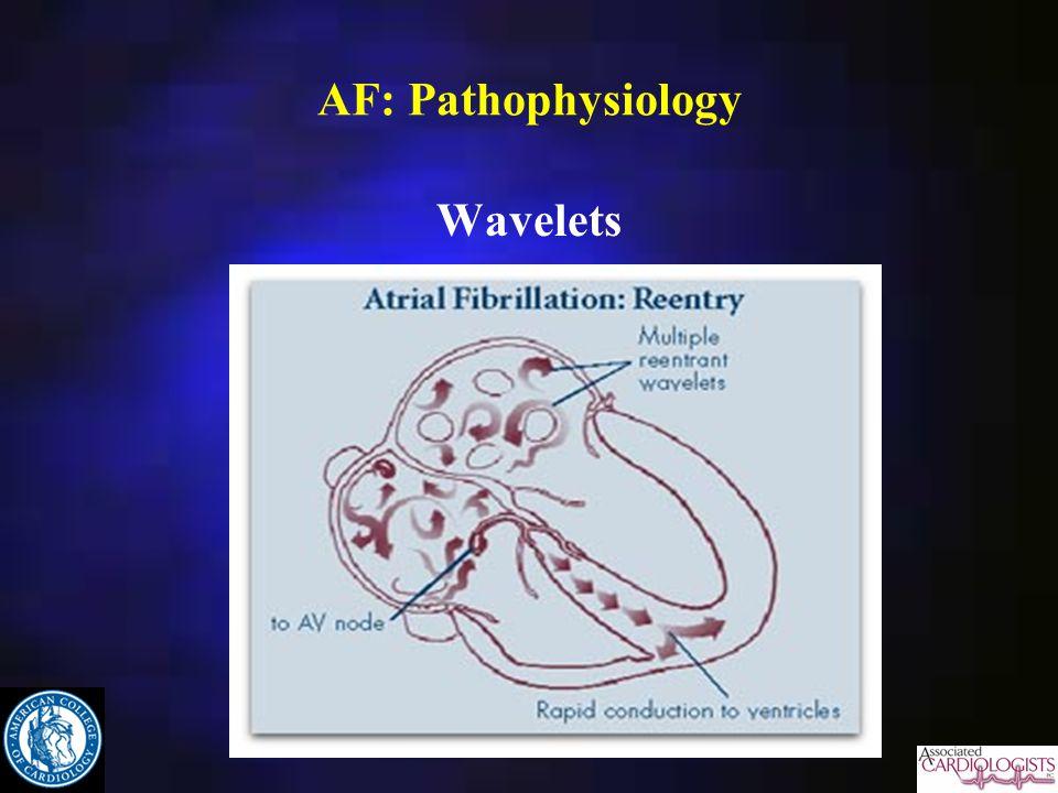 AF: Pathophysiology Wavelets