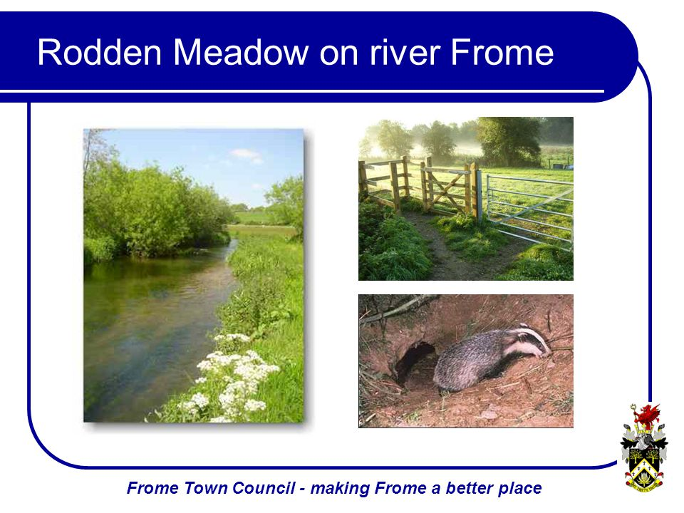 Frome Town Council - making Frome a better place Rodden Meadow on river Frome