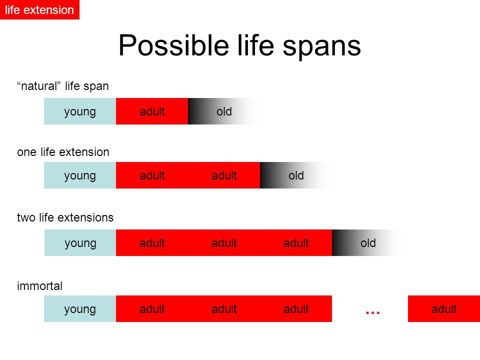 youngadultold Possible life spans youngadultold youngadult natural life span one life extension immortal old two life extensions youngadult … life extension