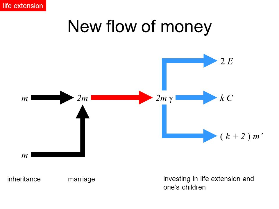 m2m 2 E m k C ( k + 2 ) m inheritancemarriage investing in life extension and ones children New flow of money life extension