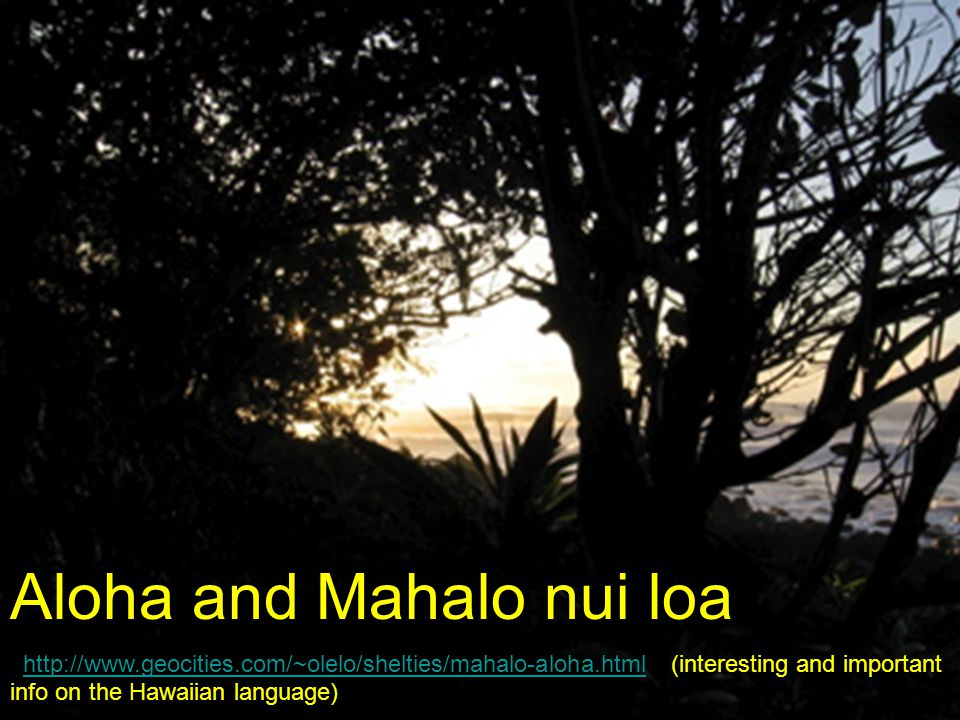 Aloha and Mahalo nui loa http://www.geocities.com/~olelo/shelties/mahalo-aloha.html (interesting and important info on the Hawaiian language)http://www.geocities.com/~olelo/shelties/mahalo-aloha.html