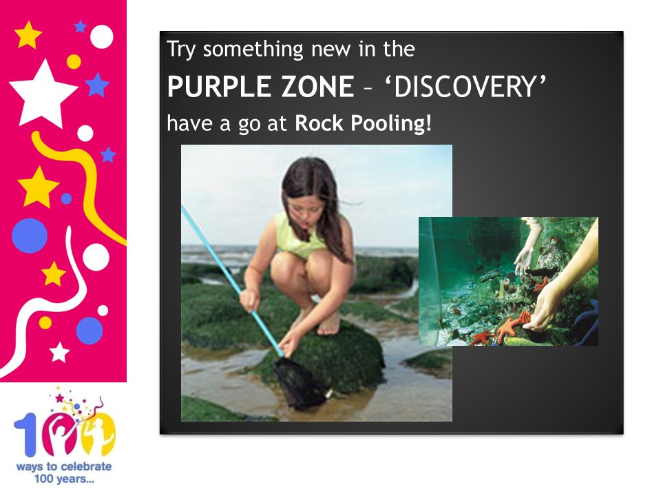 Try something new in the PURPLE ZONE – DISCOVERY have a go at Rock Pooling! Try something new in the PURPLE ZONE – DISCOVERY have a go at Rock Pooling