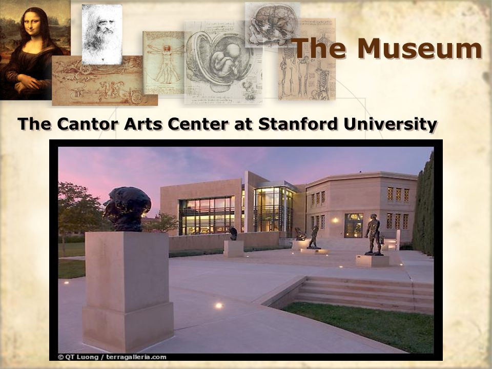 The Museum The Cantor Arts Center at Stanford University