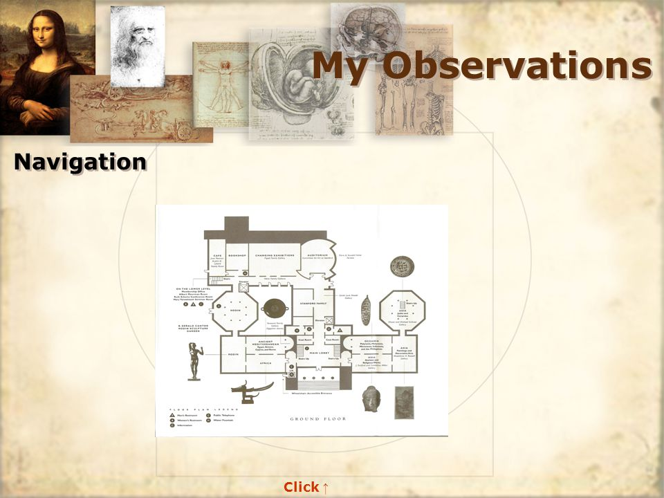 My Observations Navigation Click