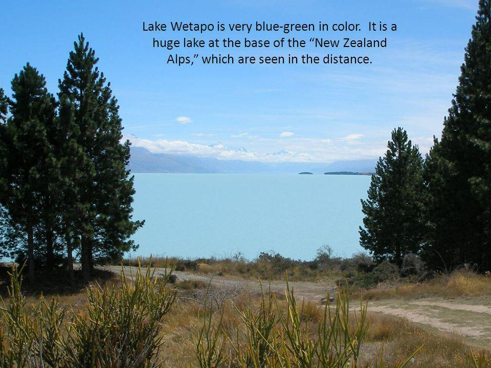 Lake Wetapo is very blue-green in color.
