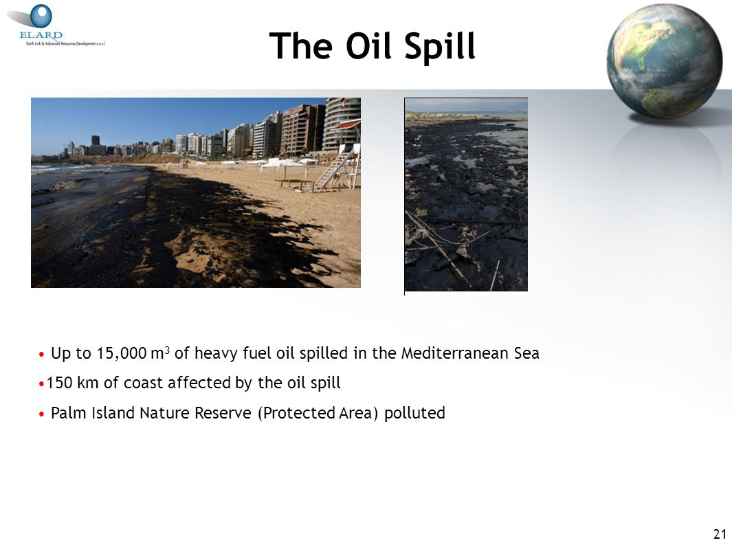 21 The Oil Spill Up to 15,000 m 3 of heavy fuel oil spilled in the Mediterranean Sea 150 km of coast affected by the oil spill Palm Island Nature Reserve (Protected Area) polluted