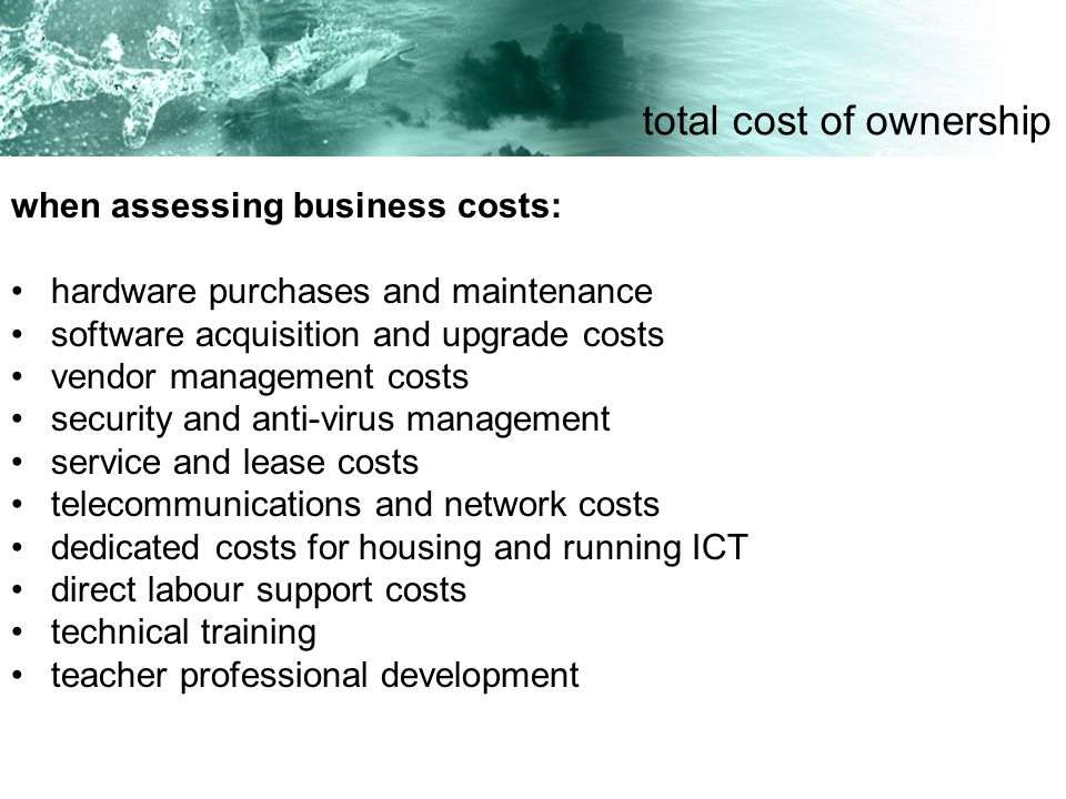 when assessing business costs: hardware purchases and maintenance software acquisition and upgrade costs vendor management costs security and anti-vir
