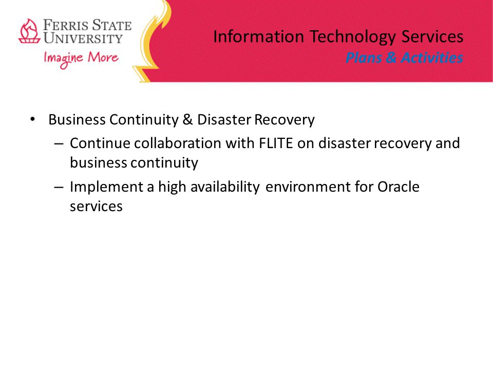 Information Technology Services Plans & Activities Business Continuity & Disaster Recovery – Continue collaboration with FLITE on disaster recovery and business continuity – Implement a high availability environment for Oracle services