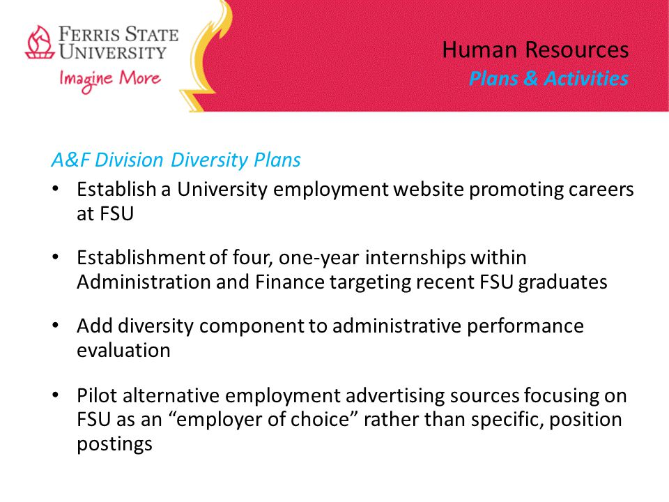 Human Resources Plans & Activities A&F Division Diversity Plans Establish a University employment website promoting careers at FSU Establishment of four, one-year internships within Administration and Finance targeting recent FSU graduates Add diversity component to administrative performance evaluation Pilot alternative employment advertising sources focusing on FSU as an employer of choice rather than specific, position postings