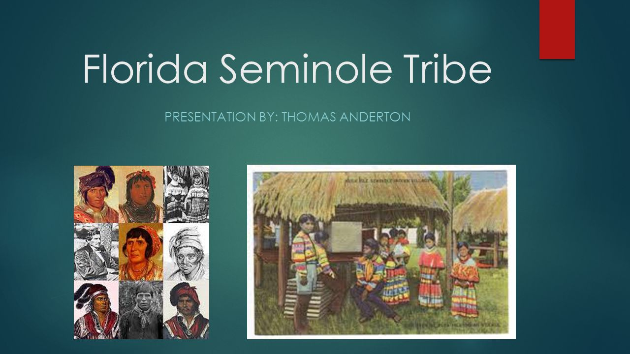 Seminole Independency Structured government system Brings order to the tribe Well funded education program Allows education to all children Well built tribal enterprises Creates jobs for tribal members Creates funds for the tribe