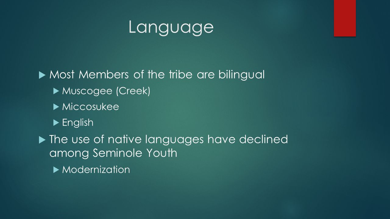 Language Most Members of the tribe are bilingual Muscogee (Creek) Miccosukee English The use of native languages have declined among Seminole Youth Modernization