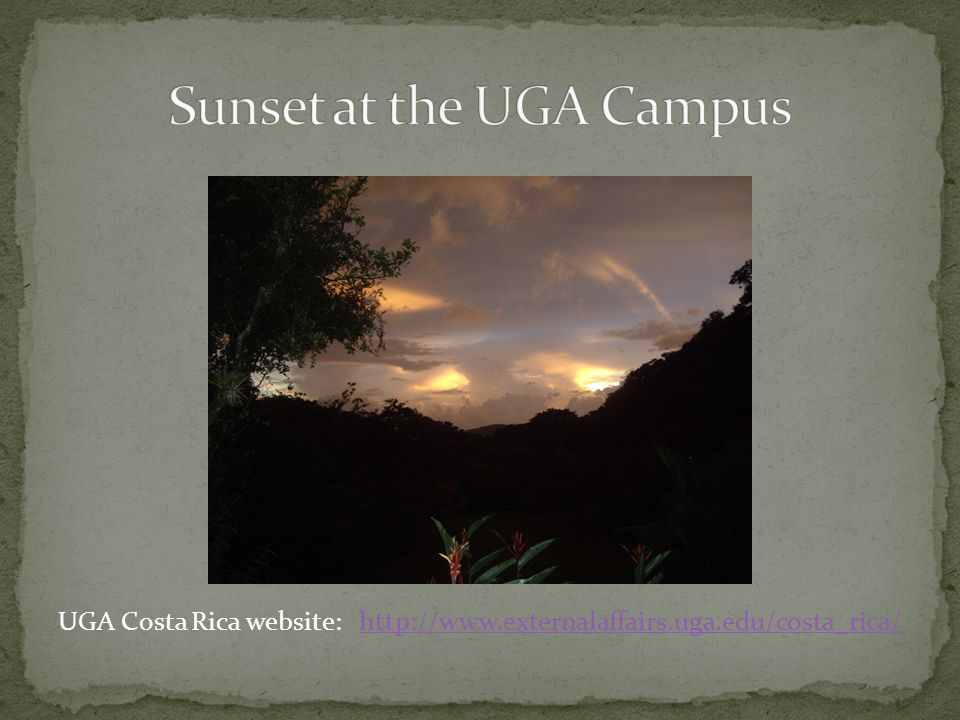UGA Costa Rica website: