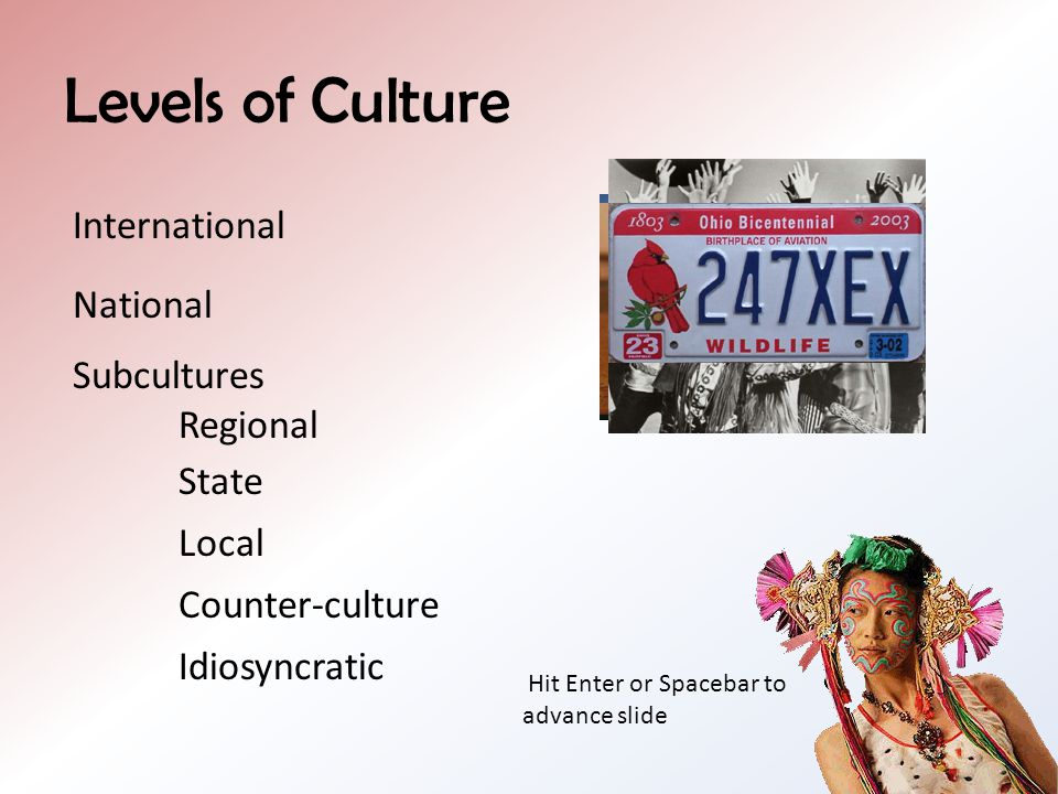 Levels of Culture International National Subcultures Regional State Local Counter-culture Idiosyncratic Hit Enter or Spacebar to advance slide