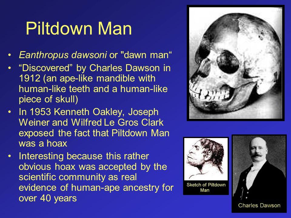 Nebraska Man Hesperopithecus haroldcookii Mr.