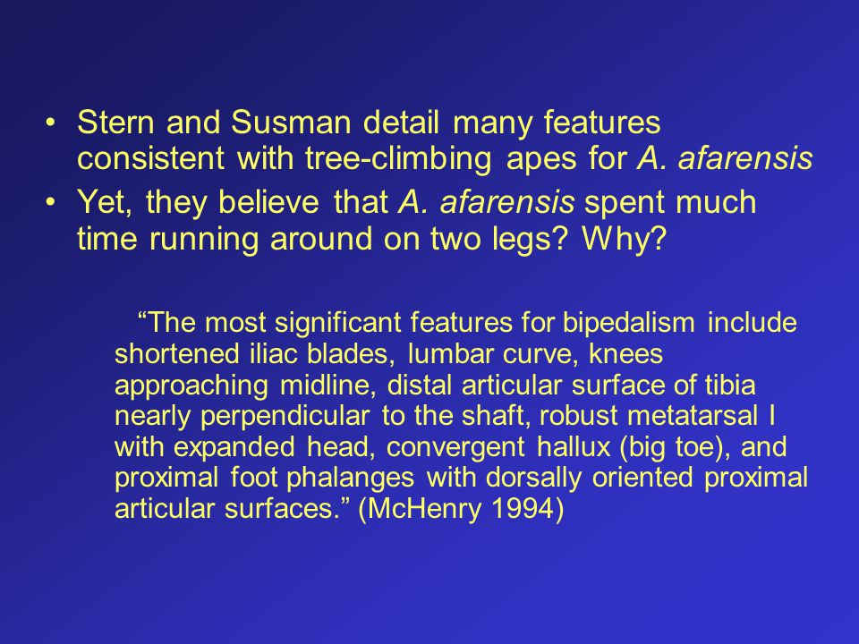 Stern and Susman detail many features consistent with tree-climbing apes for A. afarensis Yet, they believe that A. afarensis spent much time running