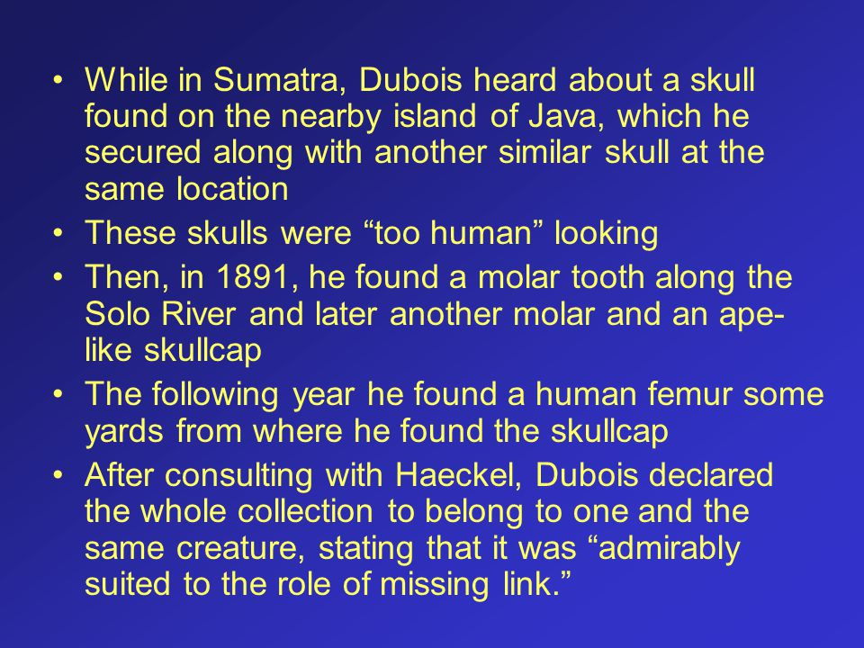 While in Sumatra, Dubois heard about a skull found on the nearby island of Java, which he secured along with another similar skull at the same locatio