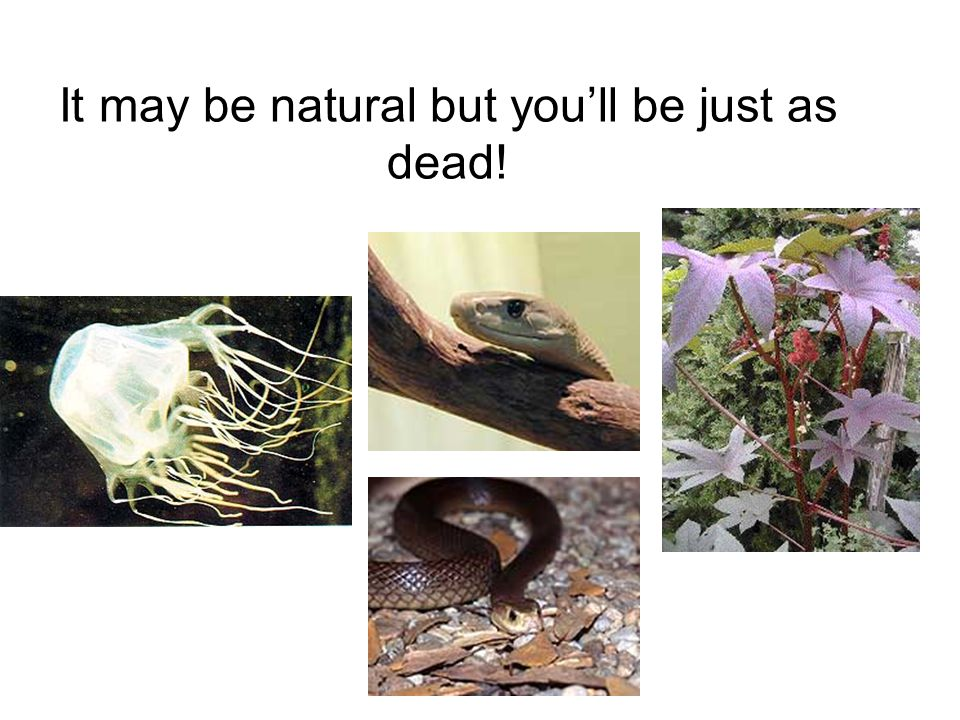 It may be natural but youll be just as dead!