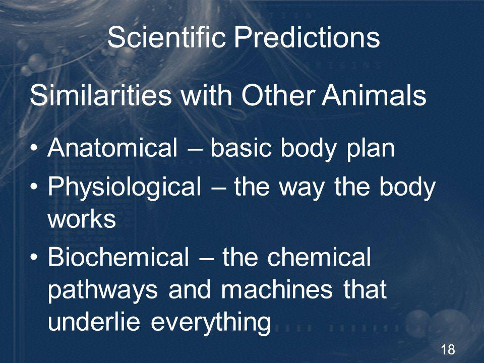 18 Scientific Predictions Anatomical – basic body plan Physiological – the way the body works Biochemical – the chemical pathways and machines that un