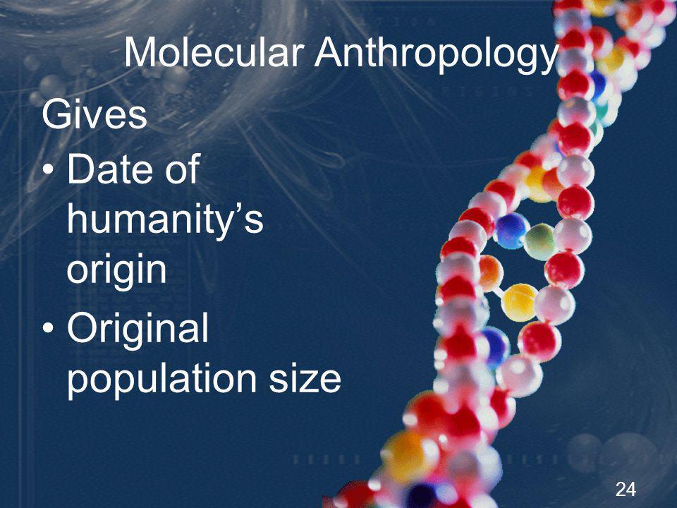 24 Gives Molecular Anthropology Date of humanitys origin Original population size