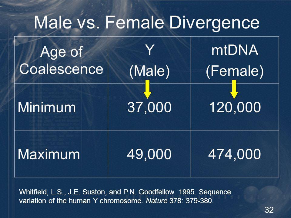32 Male vs. Female Divergence Age of Coalescence Y (Male) mtDNA (Female) Minimum37,000120,000 Maximum49,000474,000 Whitfield, L.S., J.E. Suston, and P