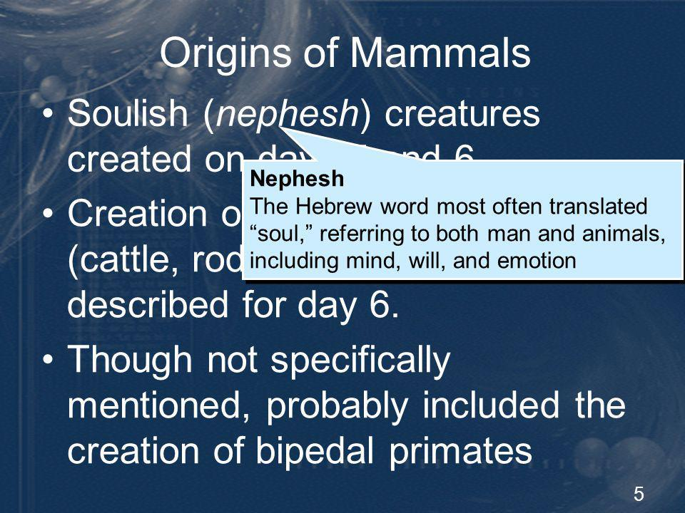 5 Origins of Mammals Soulish (nephesh) creatures created on days 5 and 6 Creation of specific mammals (cattle, rodents, and carnivores) described for