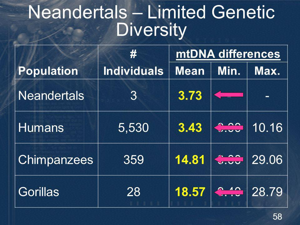 58 Neandertals – Limited Genetic Diversity Population # Individuals mtDNA differences MeanMin.Max. Neandertals33.73-- Humans5,5303.430.0010.16 Chimpan