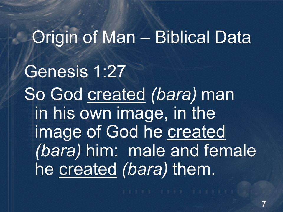 7 Origin of Man – Biblical Data Genesis 1:27 So God created (bara) man in his own image, in the image of God he created (bara) him: male and female he