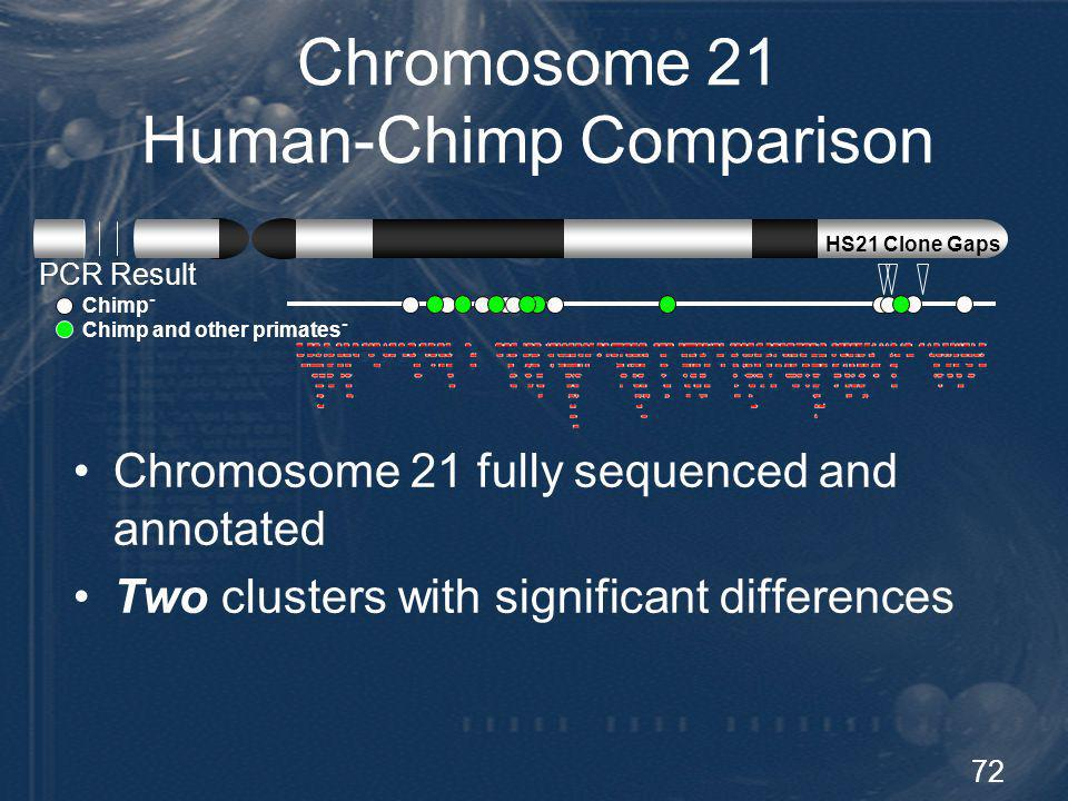 72 Chromosome 21 Human-Chimp Comparison Chromosome 21 fully sequenced and annotated Two clusters with significant differences PCR Result Chimp - Chimp
