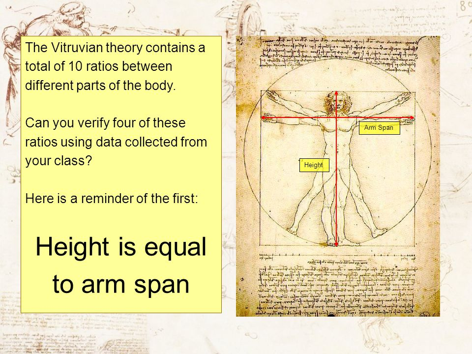 The Vitruvian theory contains a total of 10 ratios between different parts of the body. Can you verify four of these ratios using data collected from