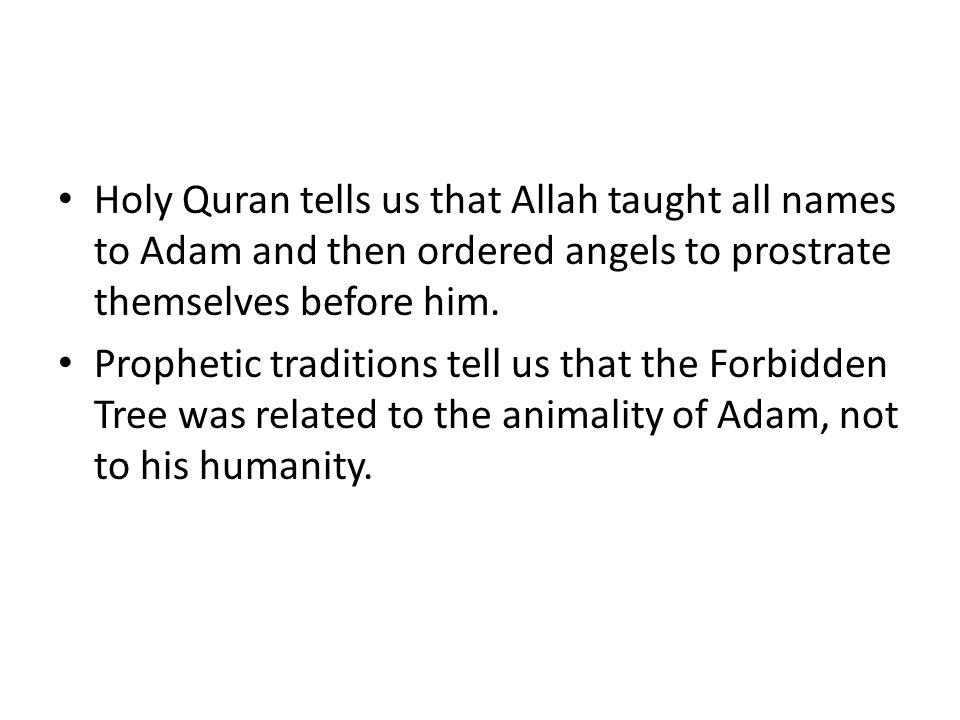 Holy Quran tells us that Allah taught all names to Adam and then ordered angels to prostrate themselves before him. Prophetic traditions tell us that